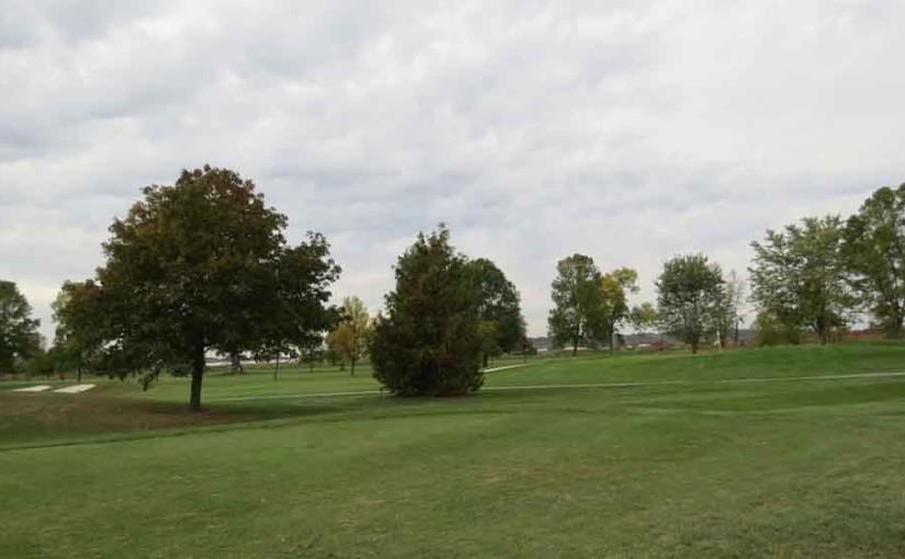 Les arbres sur terrain de golf
