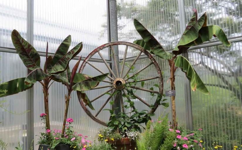 أفكار ديكور الحديقة