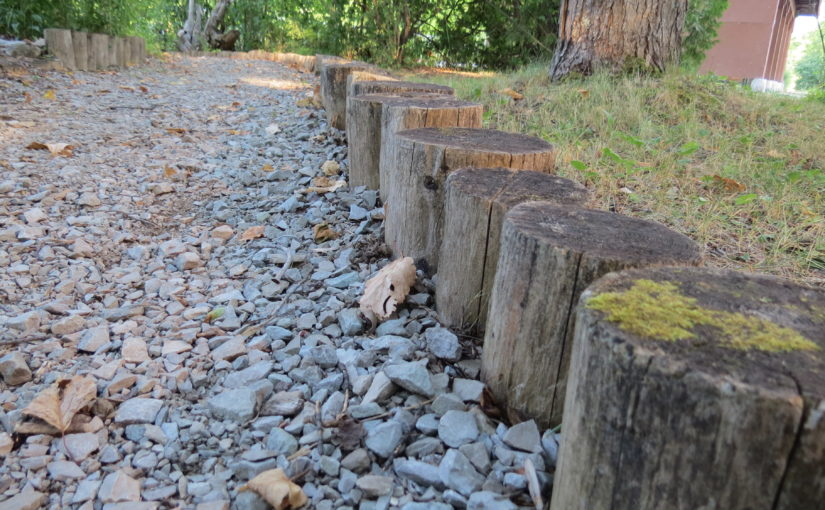 Cedar Stump Walkway