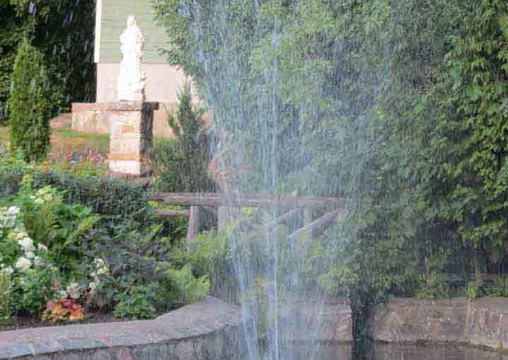 Garden Pond Water