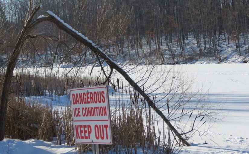 Forest Pond, Keep Off Ice