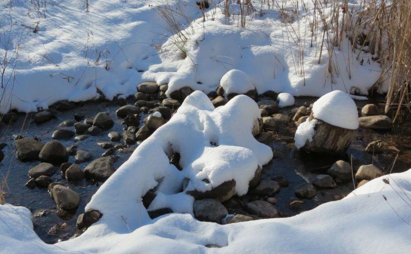 زمستان جنگل کریک