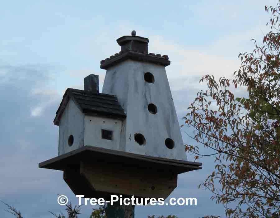 Bird Houses Creative Birdhouse Designs