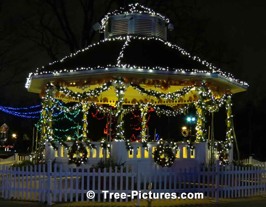 Gage Park Gazebo Decorated For Christmas, Brampton, ON | Xmas Trees at Tree-Pictures.com