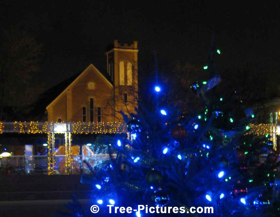 Christmas Lights With Illuminated Church In Background | Xmas Trees at Tree-Pictures.com
