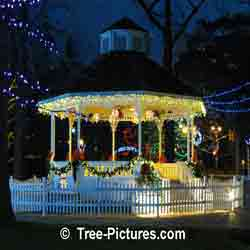 Christmas Pictures: Gazebo LED Decorations Ready for Xmas Season