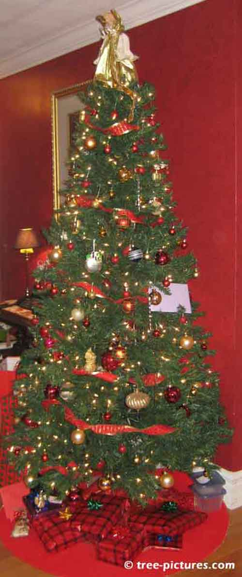 Impressive Christmas Tree Picture, Well Decorated Christmas Tree with Presents