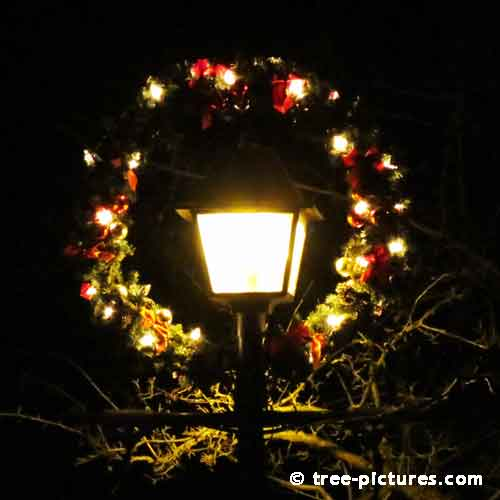 Impressive Christmas Tree Picture, Christmas Wreath Decorating Street Lantern
