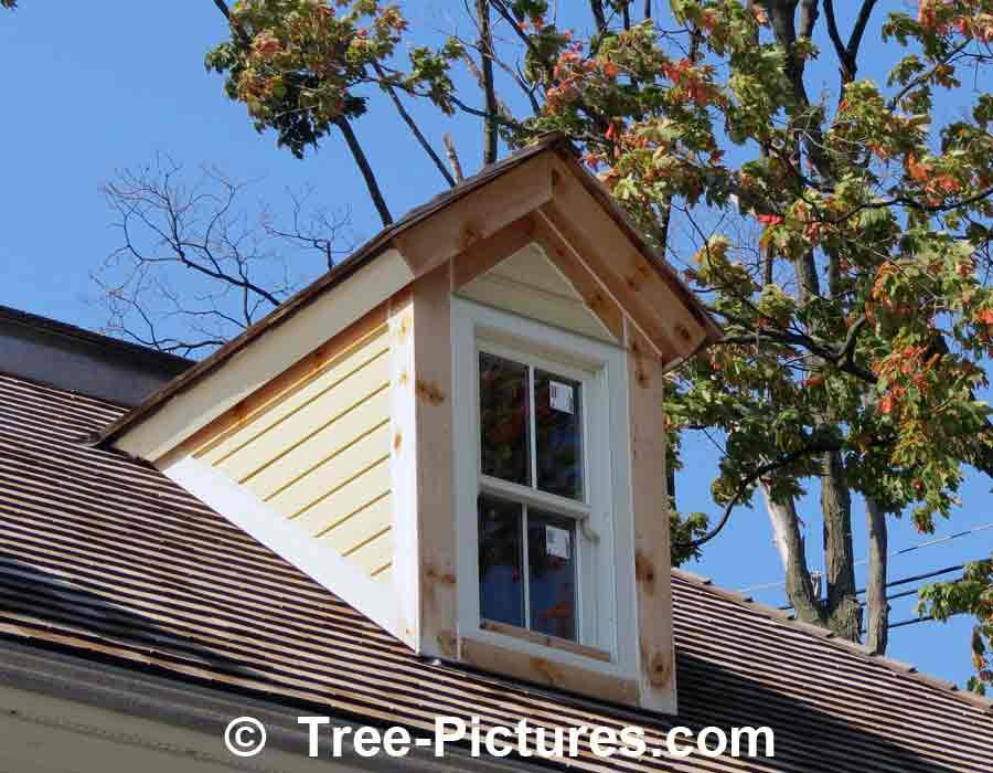 Cedar Roof: Cedar Wood Shingles or Shakes are a Upscale Traditional Architectual Roofing Wood