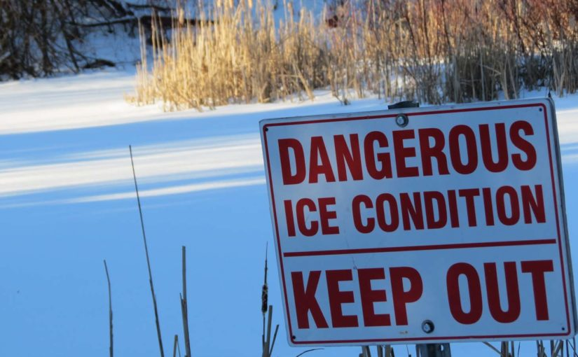 Dangers Forest Pond!