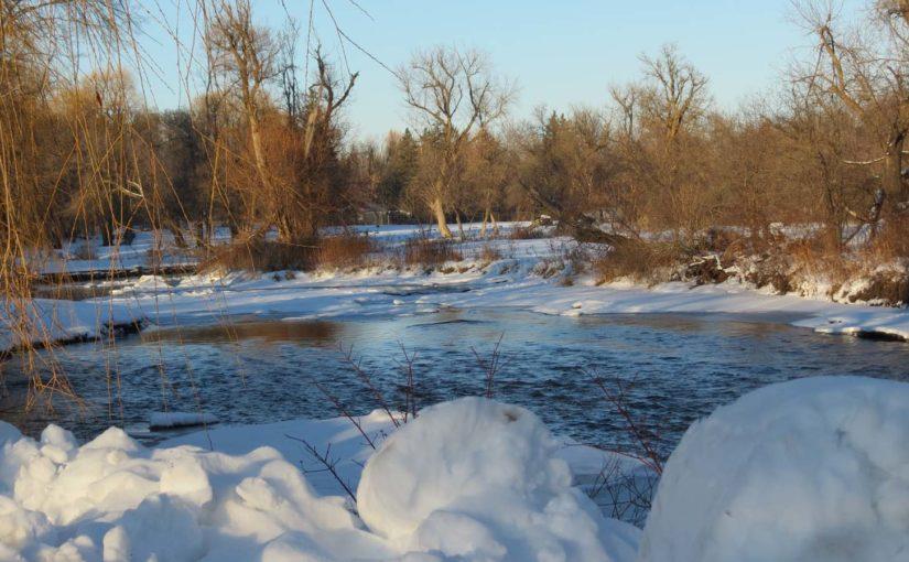 Willow Tree Creek